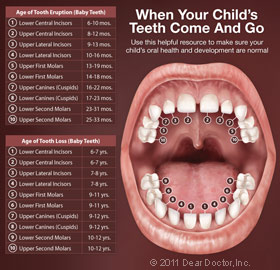 Pediatric Dentist - Kids Dentist